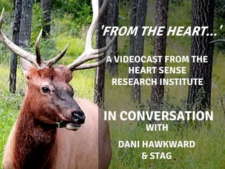 Stag Wisdom: 'From The Heart' videocast