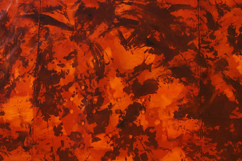 Rain Forest Series by William Iaculla