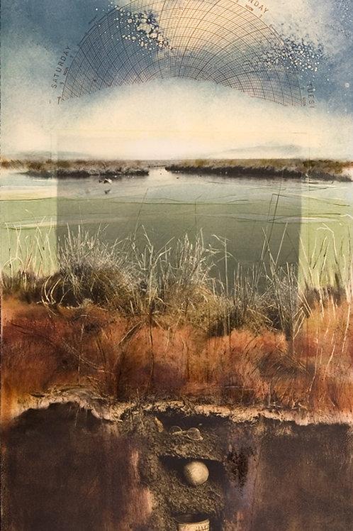 Baylands IV by Robin McCloskey
