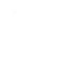 BSG_Logo_white.png