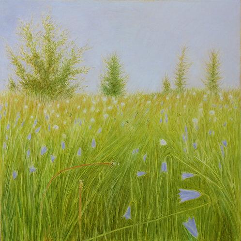 In The Grass II by Elizabeth Noerdlinger