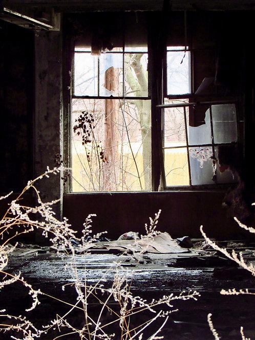 Broken Windows By Chris Brandst