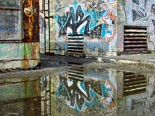 Puddle Reflection By Chris Brandstetter
