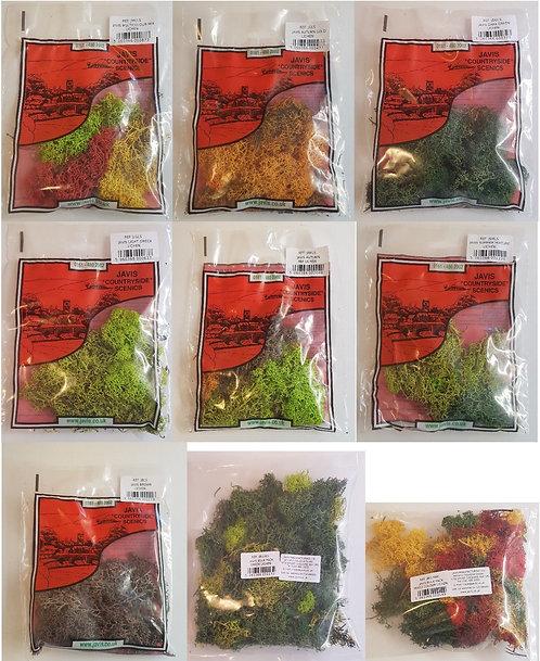 Javis Lichen (greens, autumn, summer, bulk)