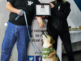 Guardian's Best Animal Rescuer of the Year Awards December 6th, 2014