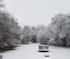 """""""Snow"""" Will VanVactor"""