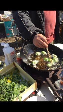 収穫した山菜天ぷら