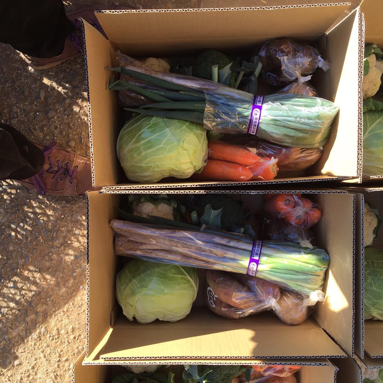 地野菜セットの斡旋(地元農家より直送)