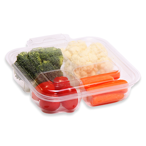 4 Compartment Hinged Parpak Container