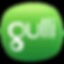 GULLI_DEGRADE_FLAT_RVB.png