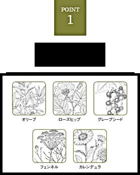 オーガニック植物成分