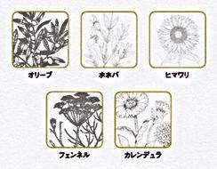 {オーガニック植物成分