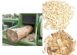 biomasas forestales.png
