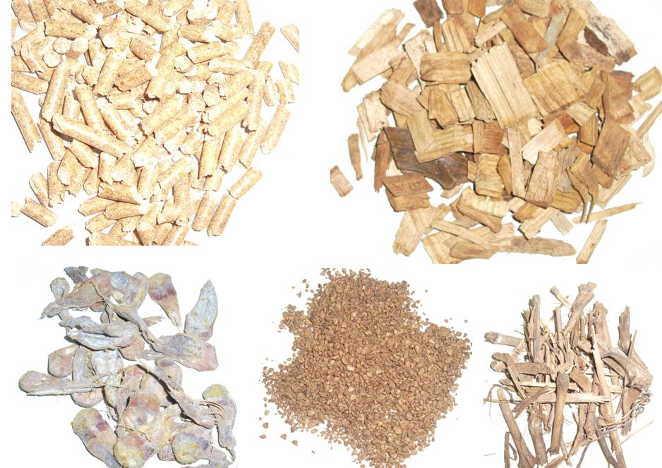 biomasas web.png