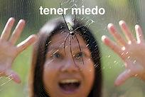 Ella_tiene_miedo_de_una_araña_en_la_ve