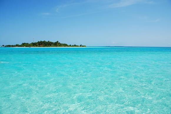 Pacific Islands Studies