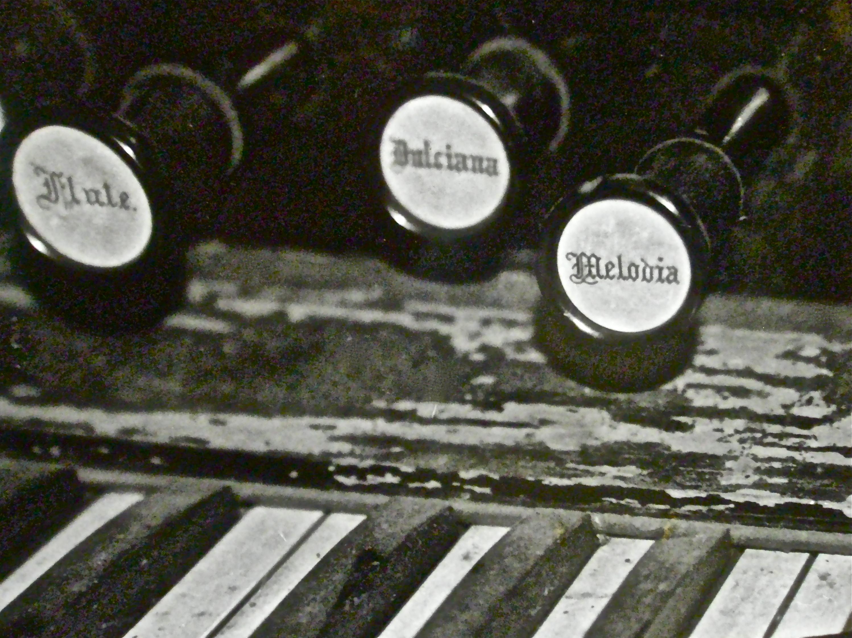 melodia.
