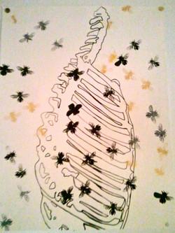 metamorphosis I.