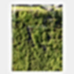 SLICE OF HEARTLAND -HEARTLAND によるアートプロジェクト-