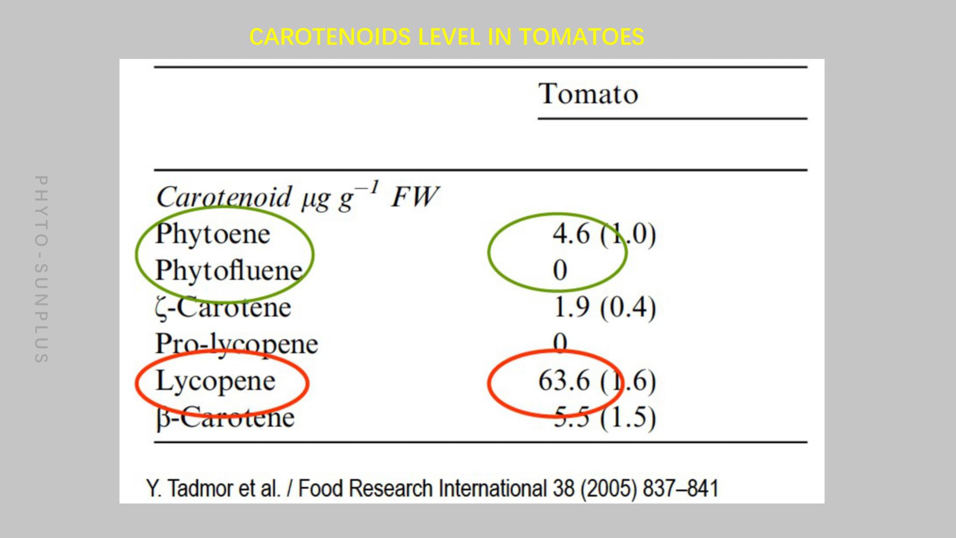 白番茄提取物_09.jpg