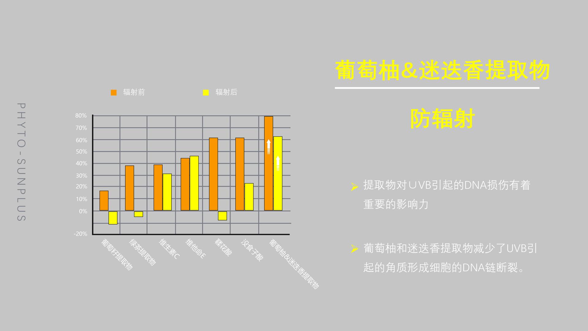 Slide32中文.png