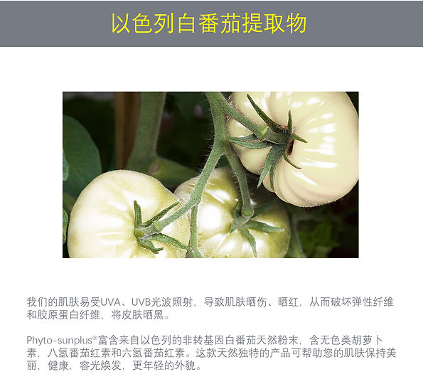 Phyto-Sunplus Chinese 5.jpg