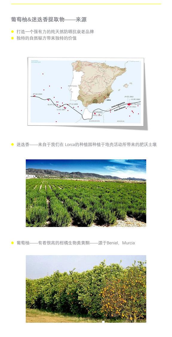 Phyto-Sunplus Chinese 16.jpg