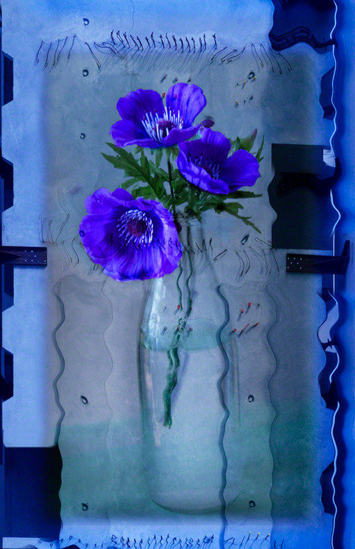 Even Flowers Get the Blues