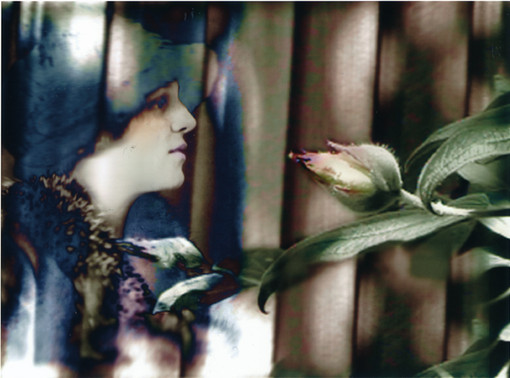 Woman Looks at Flower