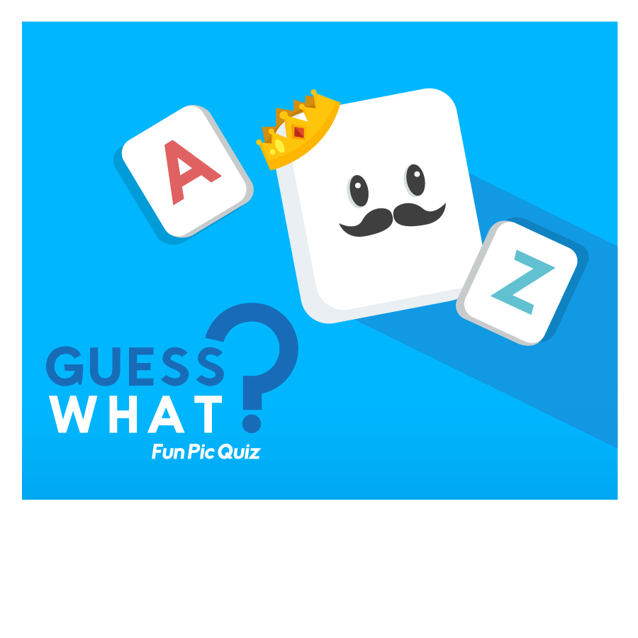 3_guesswhat