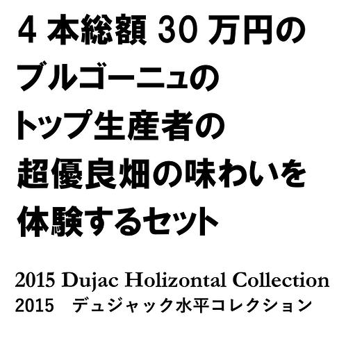 2015 デュジャック水平コレクション