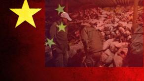 China Gov Disregard for World - Plundering the Seas