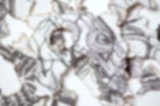 Gray's detail 5.jpg