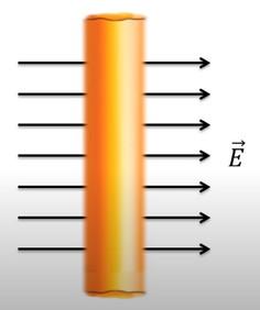 Электрическое поле в веществе. Проводники и диэлектрики в электростатическом поле (10ав)