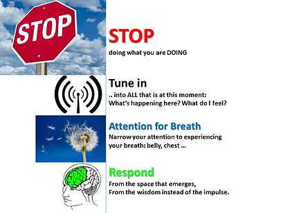 STAR-Stop-Tune_in_Breath_Response.png