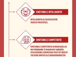 Emoties als Bron van Energie: Emotionele Fundatie. #7 Vitaliserend Leiderschap