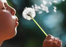 dandelion child-blowing-dandelion.jpg
