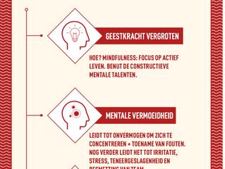 Wie Rust, Roest niet: Mentale Fundatie.     #6 Vitaliserend Leiderschap