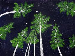 Nighttime Trees