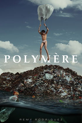 Polymere Poster Remy 2.JPG