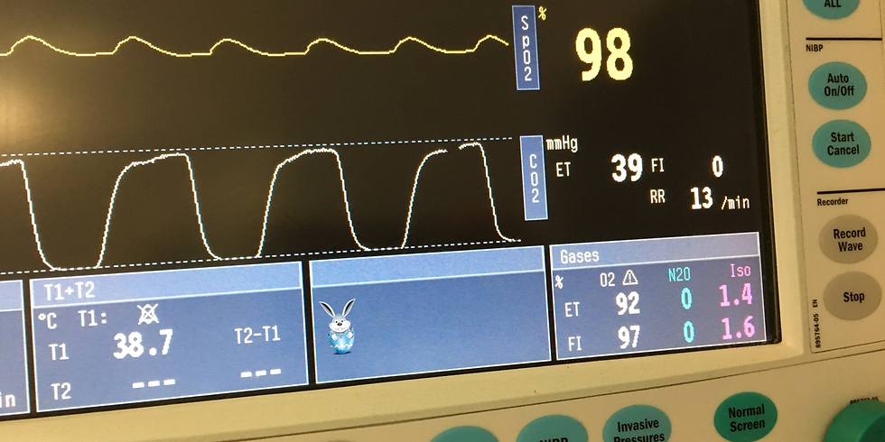 Getting to grips with capnography