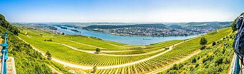 Erlebnisreise Rheingau
