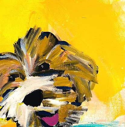Abstract Pup
