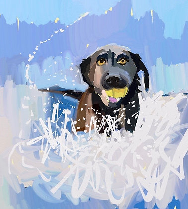 """Splashy pup"""