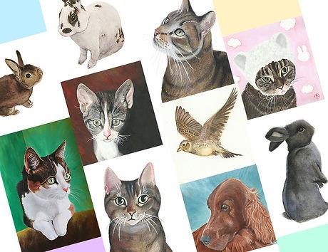 Dienst-pet-portret.jpg