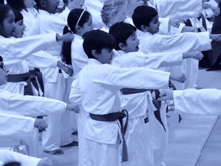 JFI Launches new karate Website