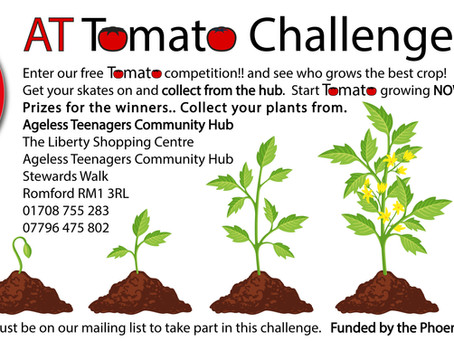 AT Tomato Challenge 2021