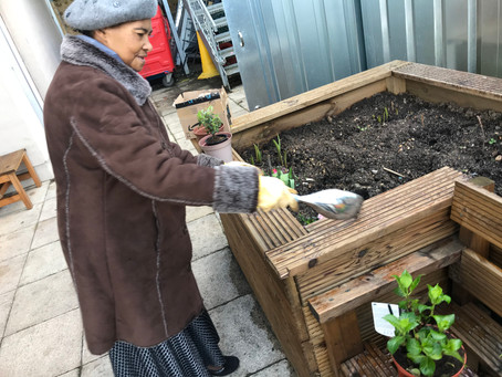 Intergenerational Gardening Feb 2020