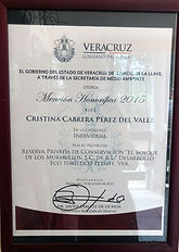 Mencion Honorifica Premio Merito Foresta