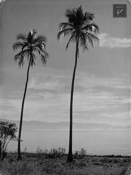 Minha terra (1953)